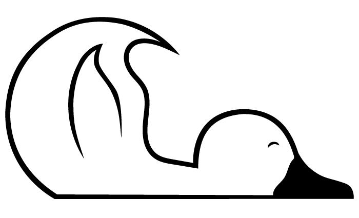 schlafente